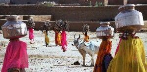 Voluntariado en Benares India