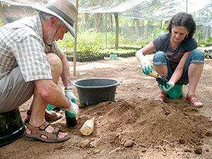 Voluntariado en Indonesia Bali