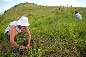 voluntariado-en-indonesia-bali-foto-2