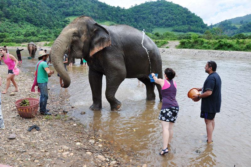 voluntariado en Laos cuidado de elefantes