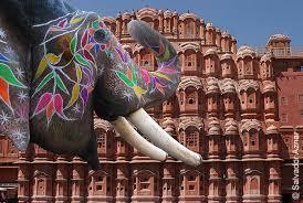 Jaipur Ele