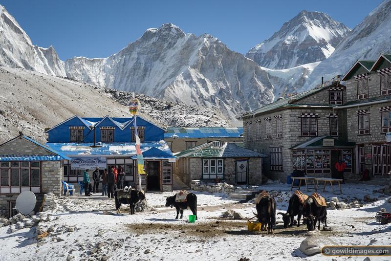 Este circuito al Parque Nacional Everest ofrece un amplio sabor del Khumbu, difícil de superar en una aventura de 3 semanas.La temporada es de febrero a noviembre en la región del Himalaya.